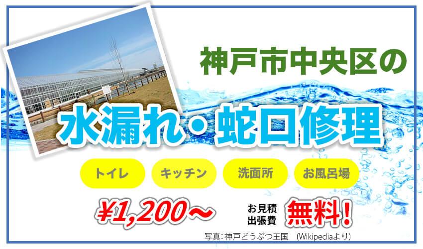 局 水道 神戸 市